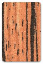 1354SD Зебрано