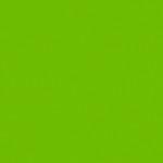 6060 Оливковый